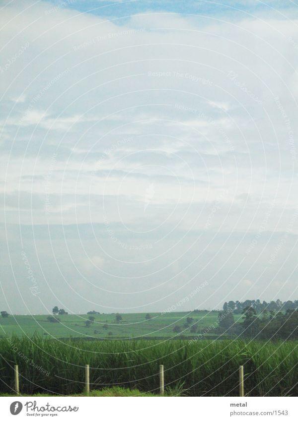 Strassenrand Wolken Straße Wiese Landschaft Hintergrundbild Verkehr Zaun