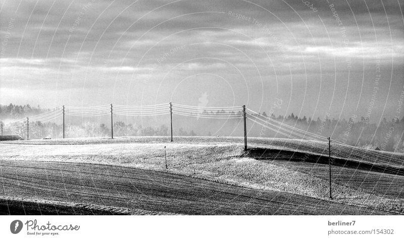 Die Wichtigkeit von Strom und Gas Elektrizität Strommast Hochspannungsleitung Feld Monochrom Energiewirtschaft Energiekrise Angst Panik Schwarzweißfoto