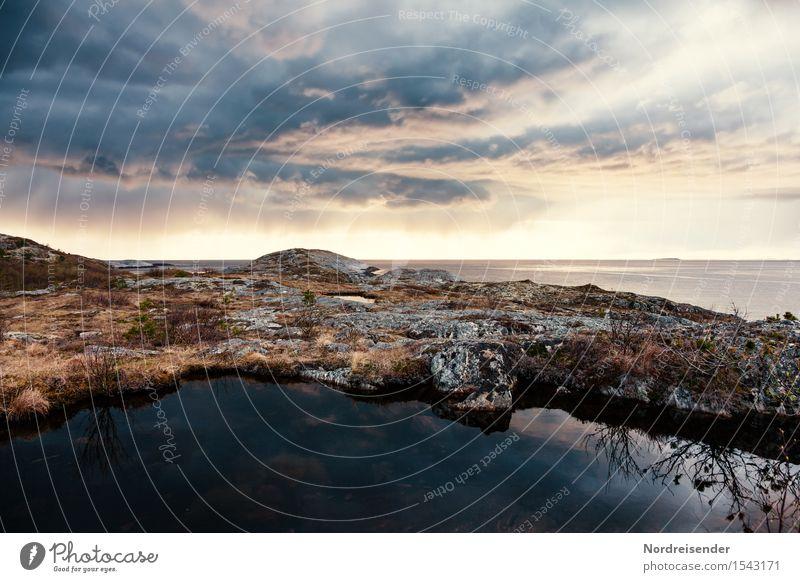 Abendstimmung am Atlantik Ferien & Urlaub & Reisen Tourismus Abenteuer Ferne Meer Natur Landschaft Urelemente Wasser Himmel Wolken Wetter Gras Sträucher Felsen