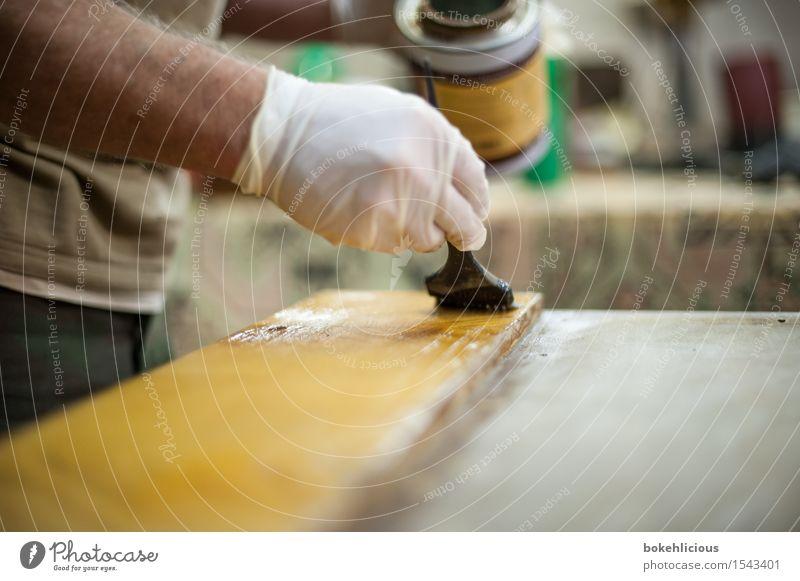 Handwerk III Mensch Mann Erwachsene Holz Arbeit & Erwerbstätigkeit maskulin glänzend Freizeit & Hobby streichen Möbel Holzbrett machen Renovieren Handwerker