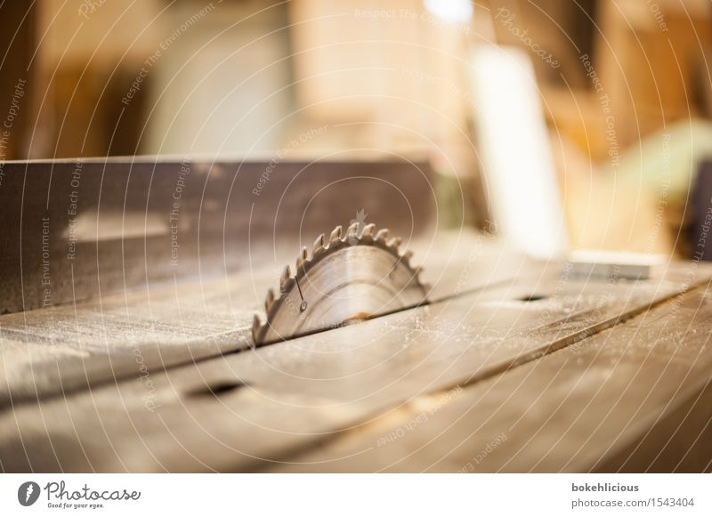 Handwerk III Holz Wohnung Häusliches Leben gefährlich Spitze bedrohlich Neugier Scharfer Gegenstand Holzbrett Werkzeug Maschine Renovieren Handwerker Handarbeit
