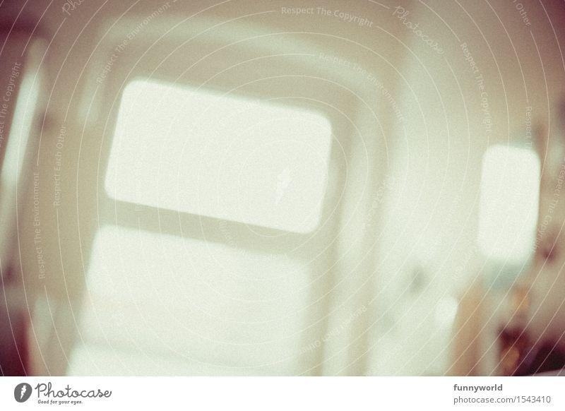 ein anständiger Kater weiß Fenster Gesundheit Feste & Feiern Party hell Angst gefährlich Brille Neigung Medikament Stress Rauschmittel Alkohol Sehvermögen