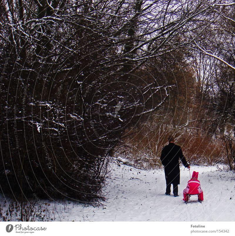 1, 2, 3, im Sauseschritt Wald Winter Vater Kind Schlitten Schnee Ast Mann Mädchen kalt Baum Rodeln ziehen Fußweg Spazierweg Spaziergang rot