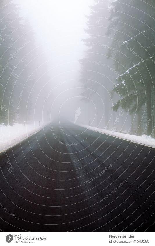 Straßenverhältnisse Ausflug Winter schlechtes Wetter Nebel Eis Frost Schnee Baum Wald Verkehr Autofahren Wege & Pfade bedrohlich dunkel kalt Akzeptanz