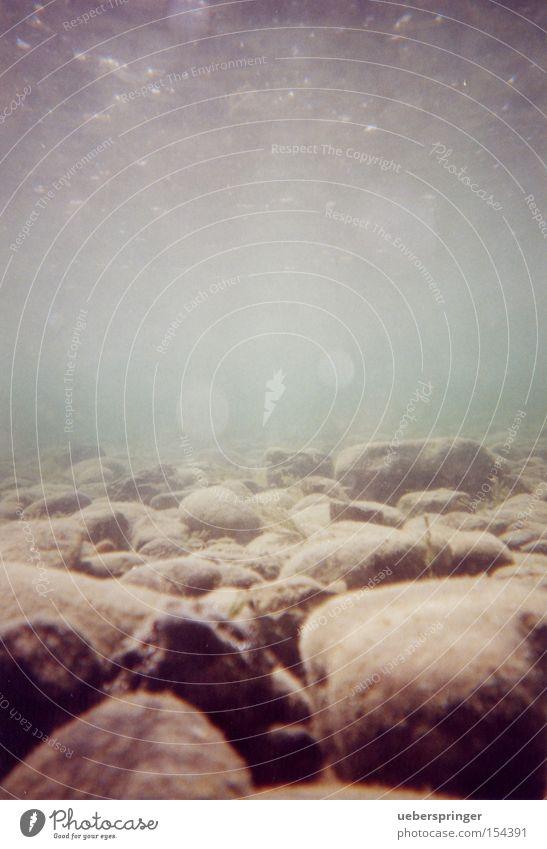 LAND UNTER Wasser schön ruhig Erholung Arbeit & Erwerbstätigkeit Stein nass Unterwasseraufnahme Romantik Neugier feucht Interesse geduldig Bodensee