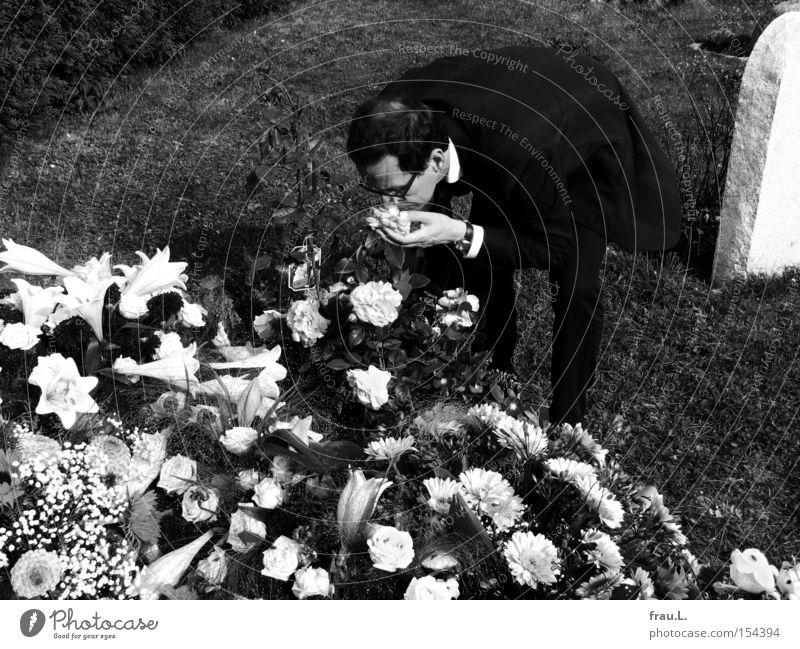 Leben Blume Respekt Zuneigung nah Duft Rose Abschied verlieren Grab Friedhof Beerdigung Mensch Kommunizieren Gefühle emotional Begräbnis Trauer
