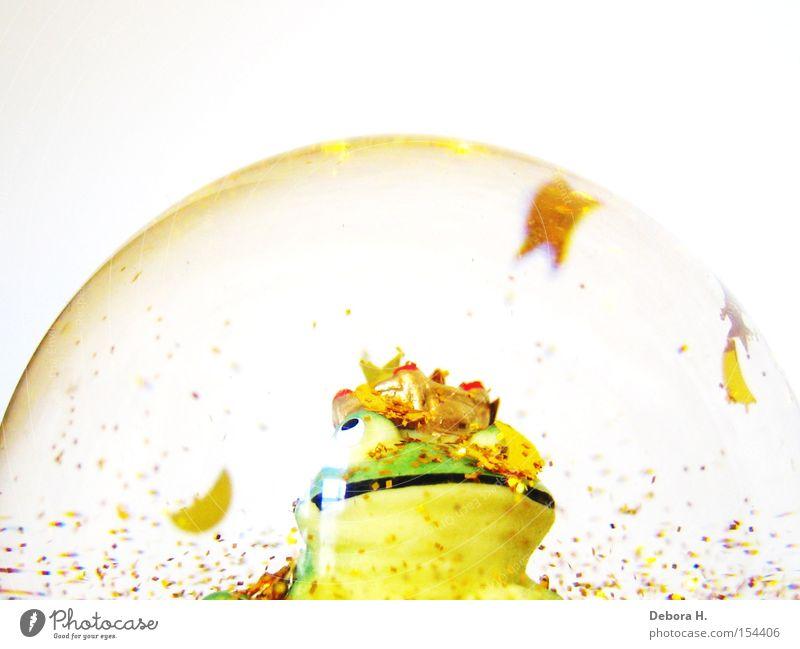 Frosch im Glas Froschkönig Schneekugel Märchen Verhext Prinzessin grün Makroaufnahme Nahaufnahme Dekoration & Verzierung