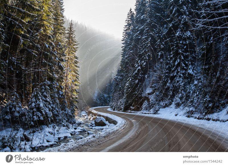 Landschaft einer verschneiten Winterstraße mit Kurven im Berg Ferien & Urlaub & Reisen Schnee Berge u. Gebirge Natur Sonnenlicht Baum Park Wald Bach Fluss