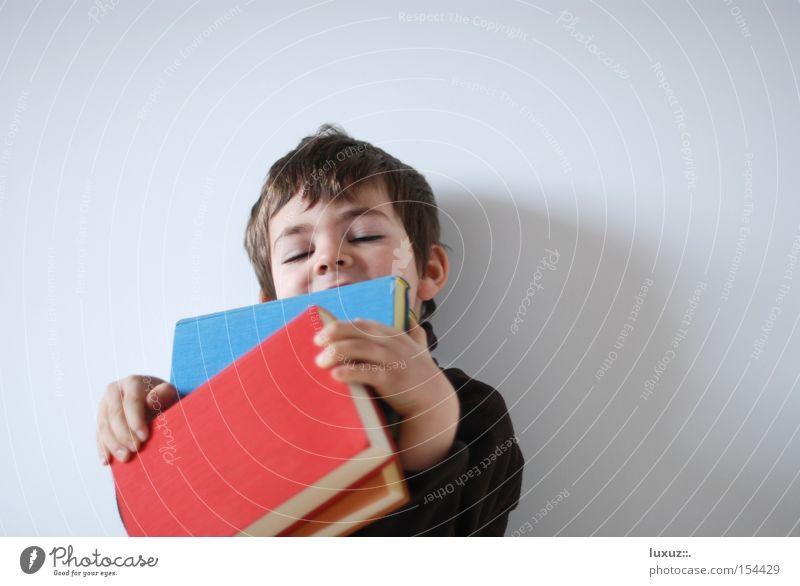 Bücherwurm Buch blau rot Freude Zufriedenheit lernen lesen Bildung genießen Literatur Roman Leseratte Schulbücher Nachhilfeunterricht