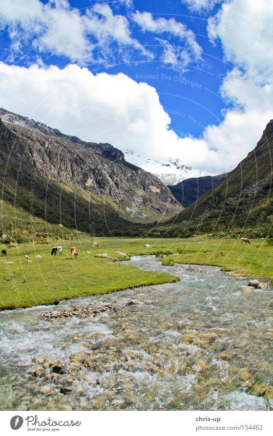 Fluß in den Anden in Peru schön Wolken Wiese Berge u. Gebirge Landschaft Fluss Romantik Bach Nationalpark traumhaft Südamerika Hochebene