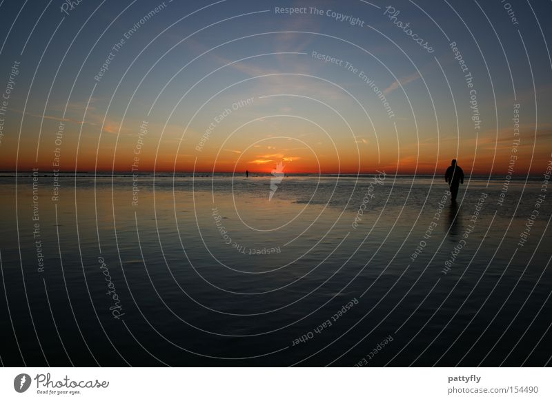 Colours Mensch Meer Strand Farbe dunkel kalt Eis Küste Sonnenuntergang Himmelskörper & Weltall