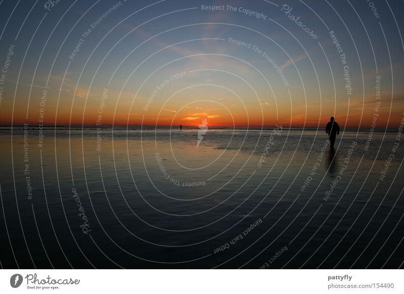 Colours Sonnenuntergang Licht Meer Reflexion & Spiegelung Mensch kalt Schatten dunkel Strand Küste Himmelskörper & Weltall Farbe Spaziergang Watt Eis