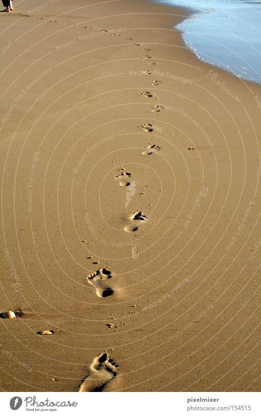 Go On Walking Wasser Meer Strand Freiheit Glück Wege & Pfade Sand Küste Spuren Fußspur Kurve