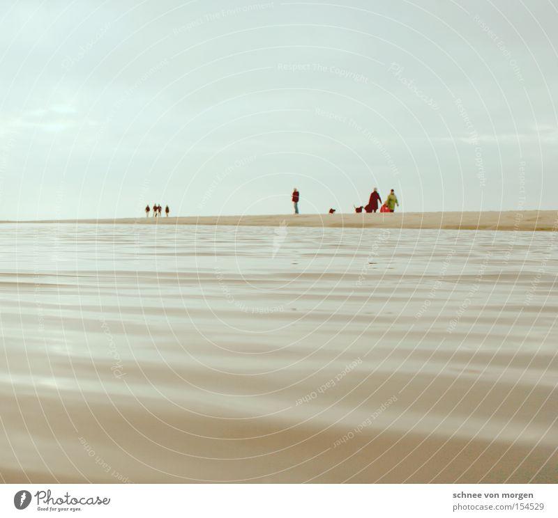 winterfreuden Mensch Wasser See Meer Insel Strand Sand Himmel Horizont Winter Perspektive kalt Ferne Mann Küste Sylt Sandbank Hund blau Wellen