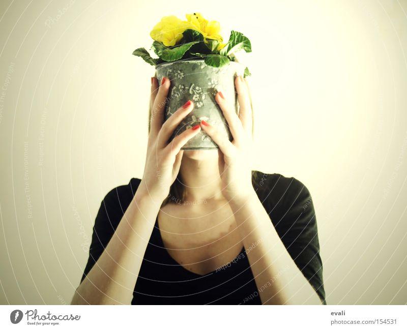 I'm yellow Hand rot gelb Blume Topf verstecken Frau hands red flower festhalten hide