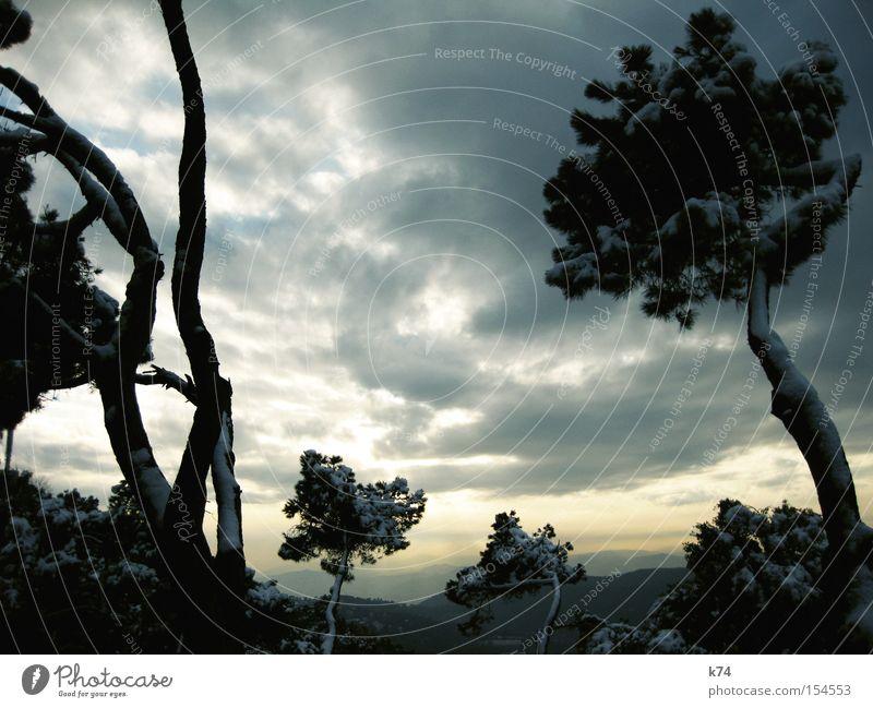 my imaginary japan Landschaft Schnee Berge u. Gebirge Baum Aussicht Winter Ferne Eis Eiszeit kalt Japan