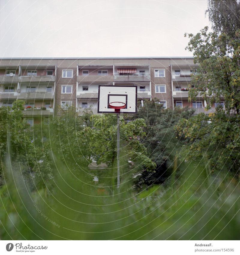 Spielen im Grünen Ghetto Spielplatz Sport Freizeit & Hobby Basketball Gras Froschperspektive Wohngebiet Plattenbau Haus Funsport freizeitbeschäftigung