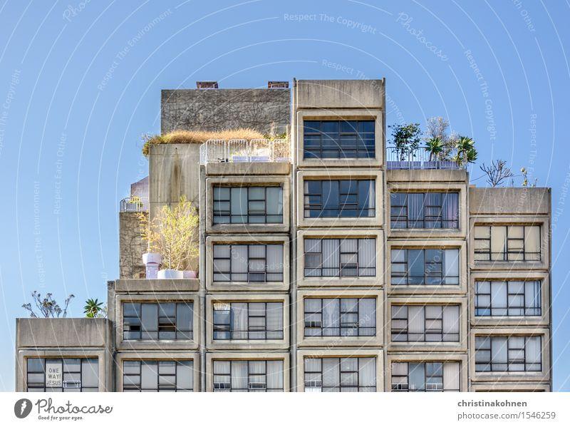 Plattenbau auf Australisch. Sirius Building von Tao Gofers. Himmel Stadt alt Pflanze Baum Haus Fenster Religion & Glaube grau Fassade Häusliches Leben dreckig