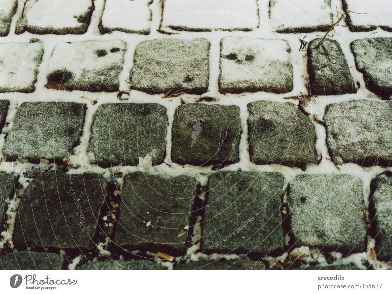 Pflaster Schnee Stein Granit Ast Winter kalt dunkel Wege & Pfade Straße analog Verkehrswege Makroaufnahme Nahaufnahme Pflastersteine