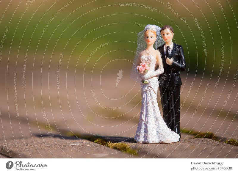 Hochzeitsshooting Frau Erwachsene Mann Paar Partner Körper Frühling Sommer Schönes Wetter Garten Park Kleid Anzug Glück Zufriedenheit Vertrauen Geborgenheit