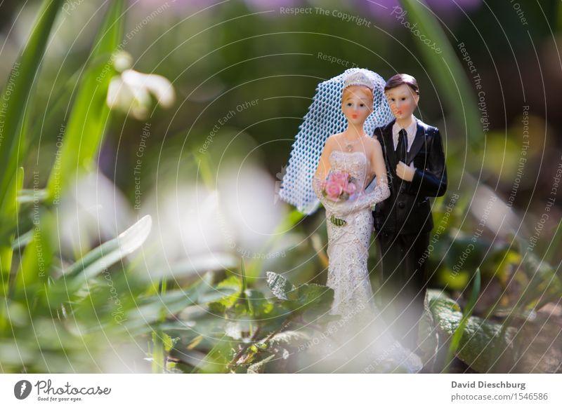 Hochzeitssaison maskulin feminin Frau Erwachsene Mann Paar Partner Körper Natur Frühling Sommer Schönes Wetter Kleid Anzug Glück Zufriedenheit Zusammensein