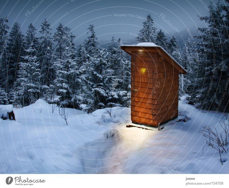 Hausbesetzung Winter Schnee Berge u. Gebirge Landschaft Wald Hütte Herz kalt blau braun gelb schwarz weiß Einsamkeit Angst Ferien & Urlaub & Reisen Gesundheit