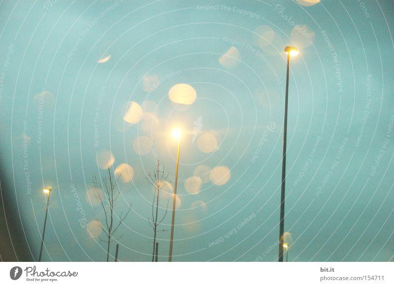 LICHT VON HIER NACH ÜBERALL Himmel blau Baum Straße dunkel träumen Stimmung Lampe Kunst Beleuchtung glänzend Energiewirtschaft Technik & Technologie Licht Wunsch
