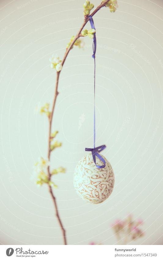 Lange Schnur mit Ei Feste & Feiern Ostern Zeichen hängen einzigartig Osterei Dekoration & Verzierung Religion & Glaube Frühling Ast Zweig Blütenknospen Kirsche