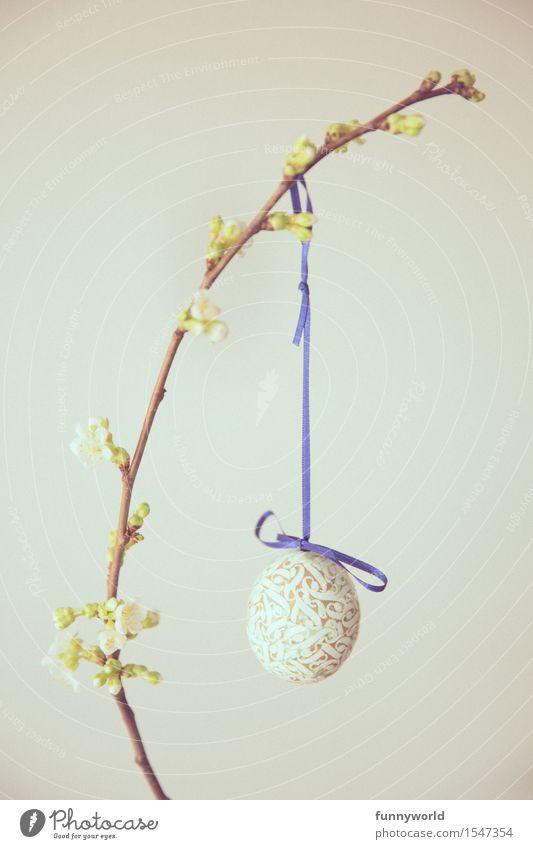 Blaue Schlupp Ostern hängen Osterei selbstgemacht Schleife blau Zweig Zweige u. Äste Kirsche Kirschblüten 1 Single minimalistisch Blütenknospen altehrwürdig