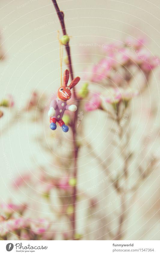 Osterhasi Ostern hängen Frühling Osterhase lustig Einsamkeit Single Blumenstrauß rosa 1 Hase & Kaninchen Dekoration & Verzierung Ostergeschenk Blüte Farbfoto