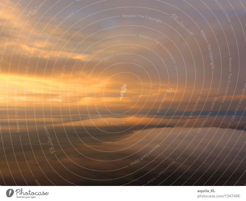 Abenddämmerung Himmel Natur Landschaft Wolken fliegen frei Aussicht hoch Schönes Wetter Flugzeug fliegend Flugzeugausblick