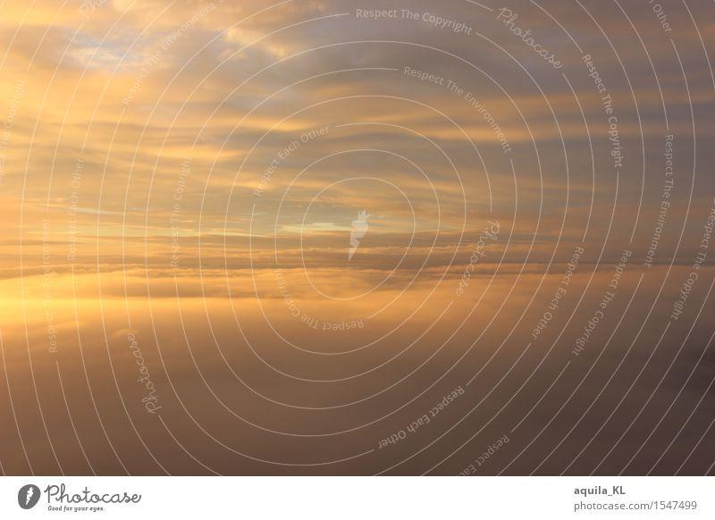 Wolkendecke Ferien & Urlaub & Reisen Tourismus Ausflug Ferne Freiheit Sonne Natur Luft Himmel nur Himmel Horizont Sonnenaufgang Sonnenuntergang Sonnenlicht