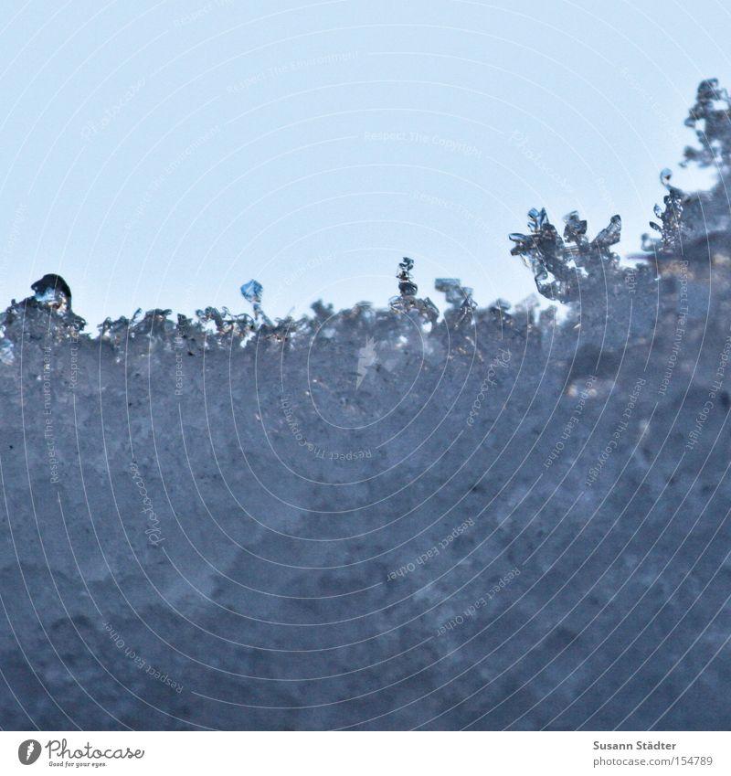 Eiskante Schnee Winter frieren Natur kalt Fenster Perspektive weiß Flocke Kristallstrukturen Kristalle Frost gefroren