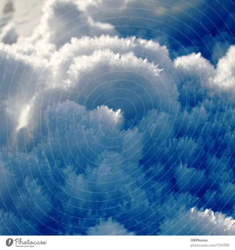 Winterzauber blau kalt Schnee glänzend Frost Makroaufnahme Kristallstrukturen bezaubernd Raureif