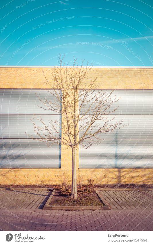 Grünflächenamt Himmel Baum Stadt Haus Bauwerk Gebäude Architektur Mauer Wand Fassade Wege & Pfade blau braun gelb Kondensstreifen Schatten Parkplatz Linie