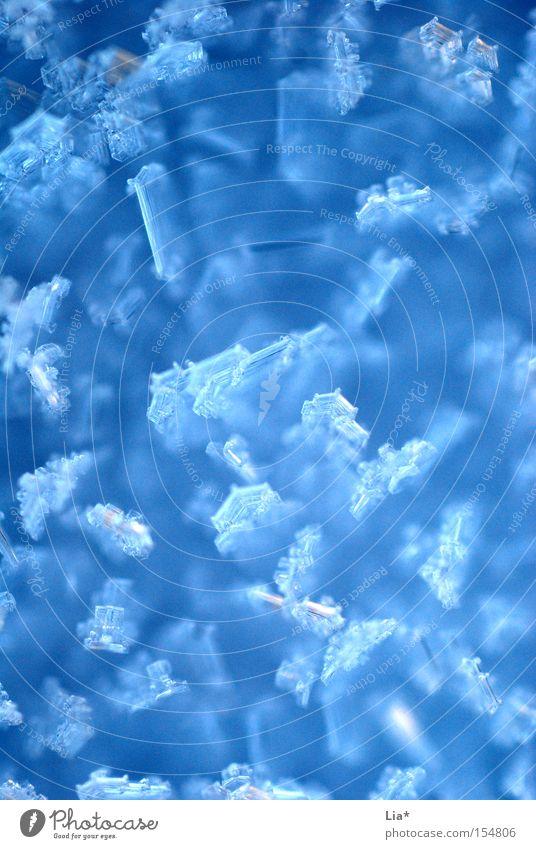 feel like ice Winter Schnee Eis Frost frieren kalt nah blau Eiskristall Kristallstrukturen gefroren Hintergrundbild Hintergrund neutral Nahaufnahme