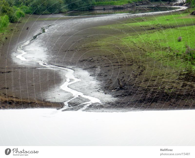 Trockener See [7] Baum Pflanze See Landschaft Fluss trocken Flußbett