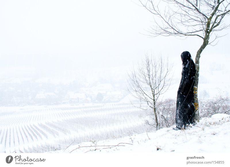 sehnsucht Winter Schnee Gefühle Schneefall Landschaft Romantik Sehnsucht mystisch Fantasygeschichte Weinberg Grufti