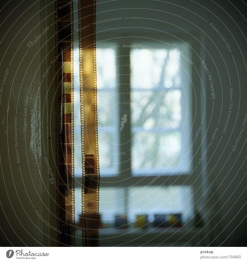Trockenübung Fotografie analog Küche Fenster Wohnung Bild negativ Freude Filmindustrie