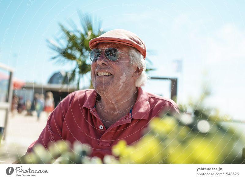 Glücklicher moderner älterer Mann im tropischen Sonnenschein Wellness Erholung Ferien & Urlaub & Reisen Sommer Erwachsene Sonnenbrille alt Lächeln sitzen trendy
