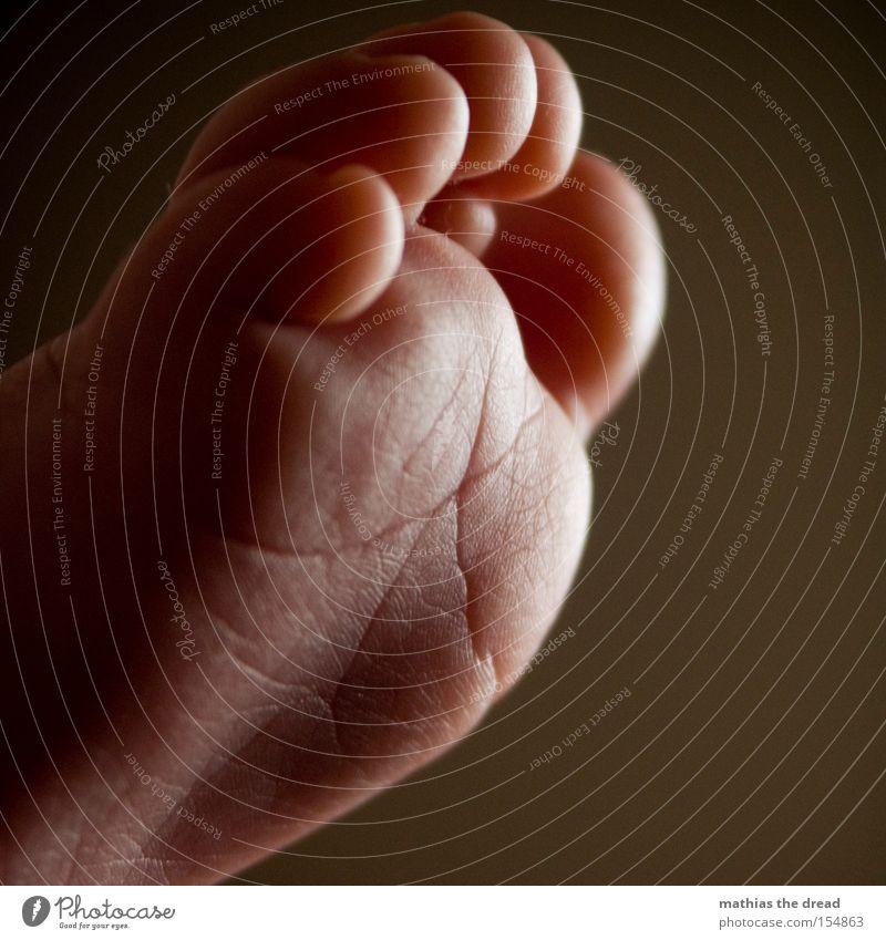 PATSCHEFÜSSLEIN Fuß Zehen Fußsohle Fußballen Haut Makroaufnahme Falte Hautfalten klein Baby süß niedlich Schatten Licht Kleinkind Freude zerkleinern Knubbel