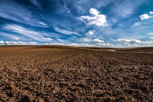 Himmel und Erde Natur Pflanze blau Gesunde Ernährung Landschaft Wolken ruhig Ferne Umwelt Frühling Religion & Glaube Gesundheitswesen braun Horizont Feld