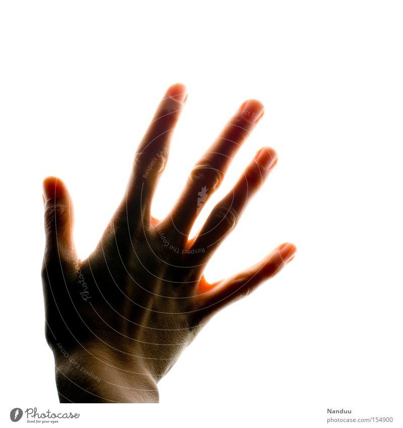 Nicht sehen. Fühlen. Hand Gefühle hell Finger Hoffnung Trauer Vergänglichkeit berühren leuchten Strahlung Verzweiflung Sinnesorgane greifen Paradies blind sensibel
