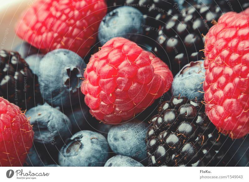 Beerig Lebensmittel Frucht Ernährung Bioprodukte Vegetarische Ernährung Diät Fasten frisch Gesundheit lecker natürlich süß blau rot schwarz Beeren Himbeeren
