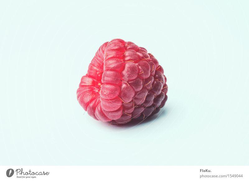 Die Himbeere Lebensmittel Frucht Ernährung lecker natürlich süß rosa rot weiß Himbeeren Beeren Vitamin Bioprodukte Vegane Ernährung Vegetarische Ernährung