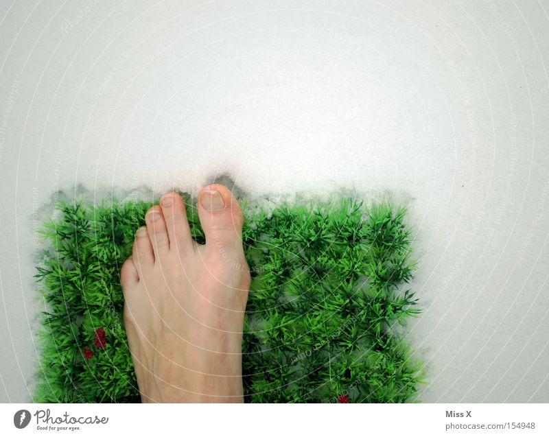 noch 1x kalt & dann kommt endlich das Fußbad dran Blume grün Winter kalt Schnee Wiese Gras Fuß Gesundheit Frost Rasen frieren Fleck bleich Zehen Teppich