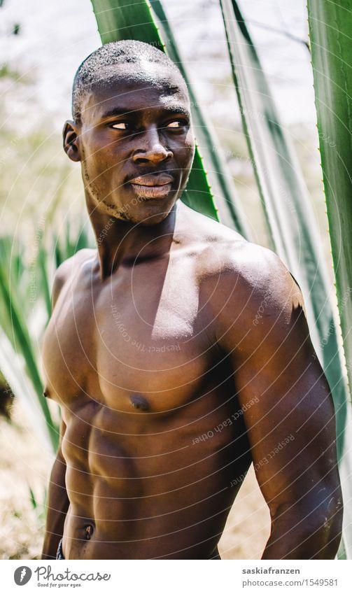 Untouchable. Lifestyle schön Fitness Sport-Training maskulin Junger Mann Jugendliche Erwachsene Brust 1 Mensch Pflanze ästhetisch heiß modern muskulös nackt