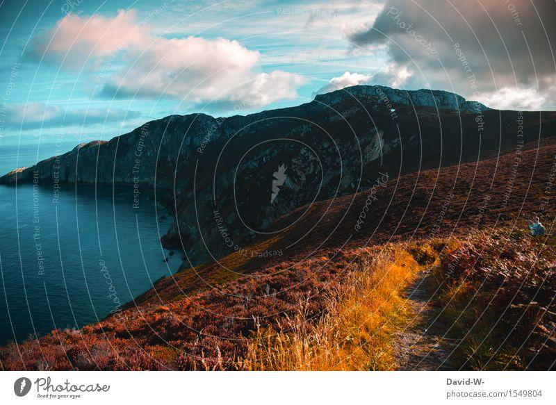 Wanderlust Mensch Natur Ferien & Urlaub & Reisen Jugendliche Mann Sommer Sonne Junger Mann Landschaft Wolken Ferne Erwachsene Leben Herbst Küste Freiheit