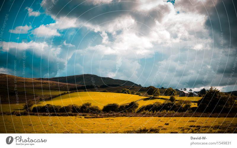 die schönen Seiten der Natur Umwelt Landschaft Himmel Wolken Gewitterwolken Sonne Sonnenlicht Frühling Sommer Herbst Klima Klimawandel Wetter Schönes Wetter