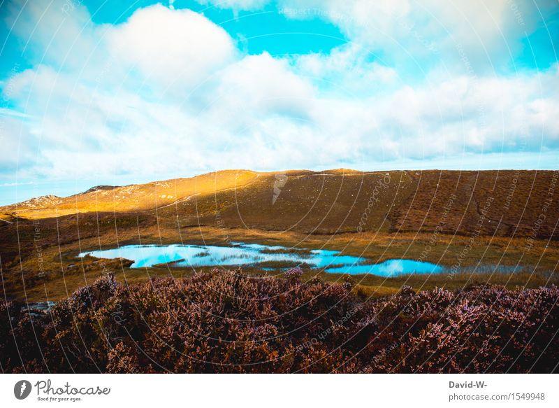 See Himmel Natur Ferien & Urlaub & Reisen Pflanze schön Sommer Wasser Sonne Landschaft Wolken ruhig Ferne Berge u. Gebirge Umwelt Freiheit